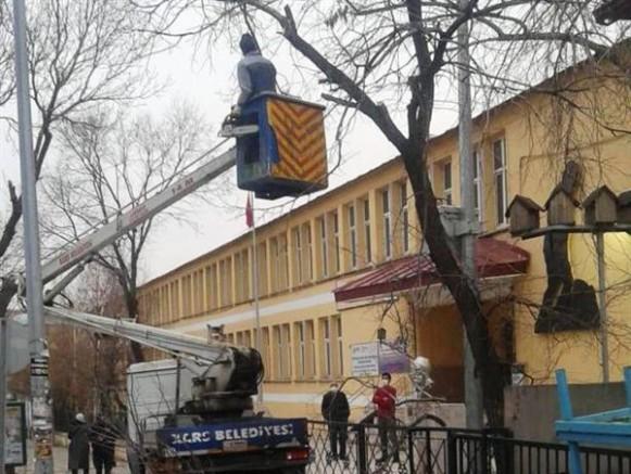 Kars Belediyesi, ağaç budama çalışması başlattı