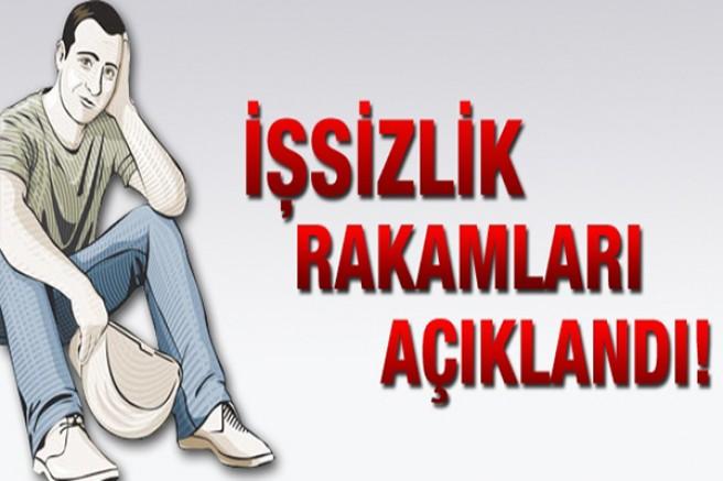 Türkiye'de işsiz sayısı 1 milyon 376 bin kişi arttı